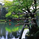 gratitude quote picture